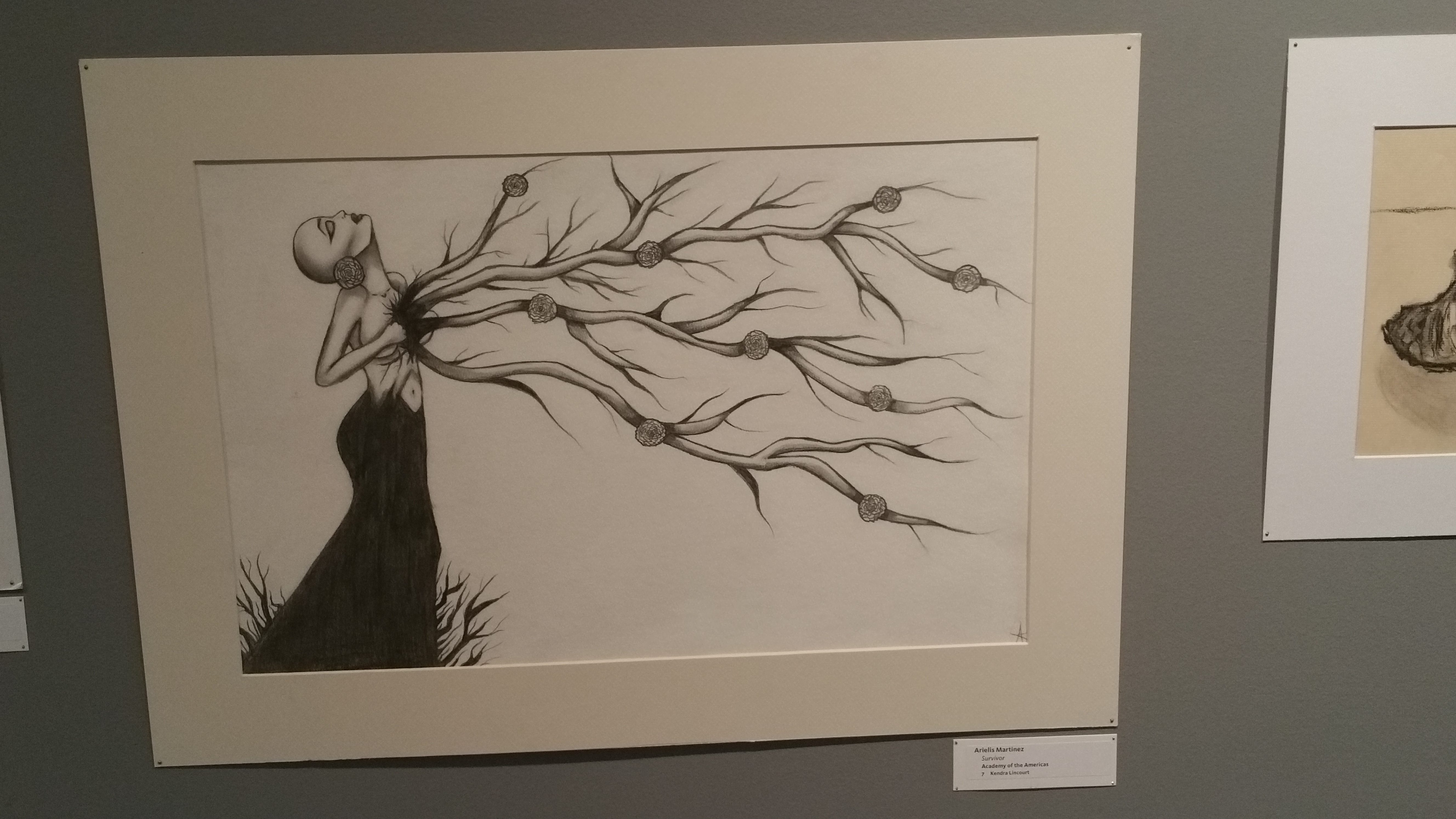 "Pen and ink drawing of woman in black gown with branches coming out of her chest titled ""Survivor"" by Arielis Martinez, student from the Academy of the Americas"