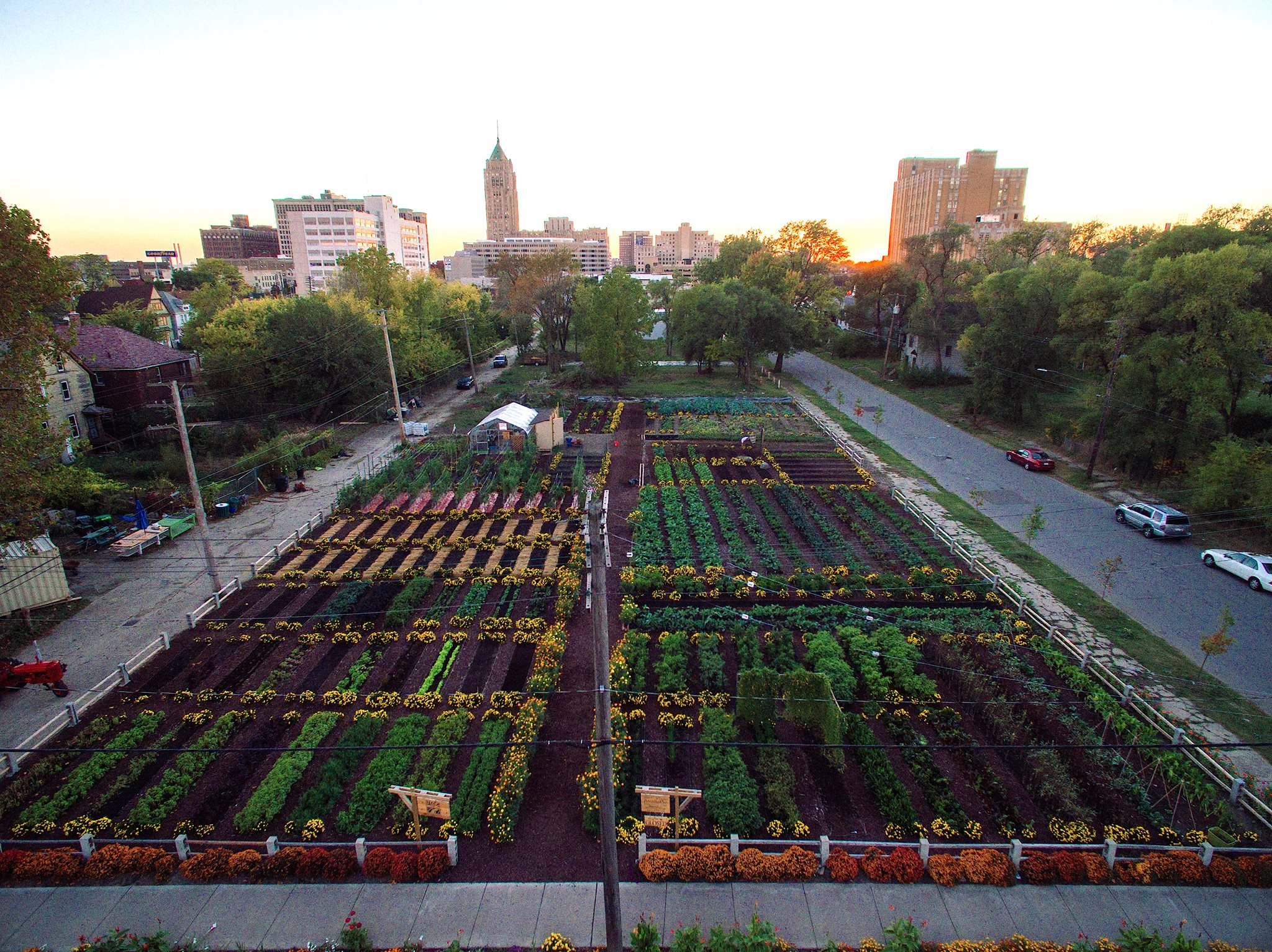 Large sky view of urban farm