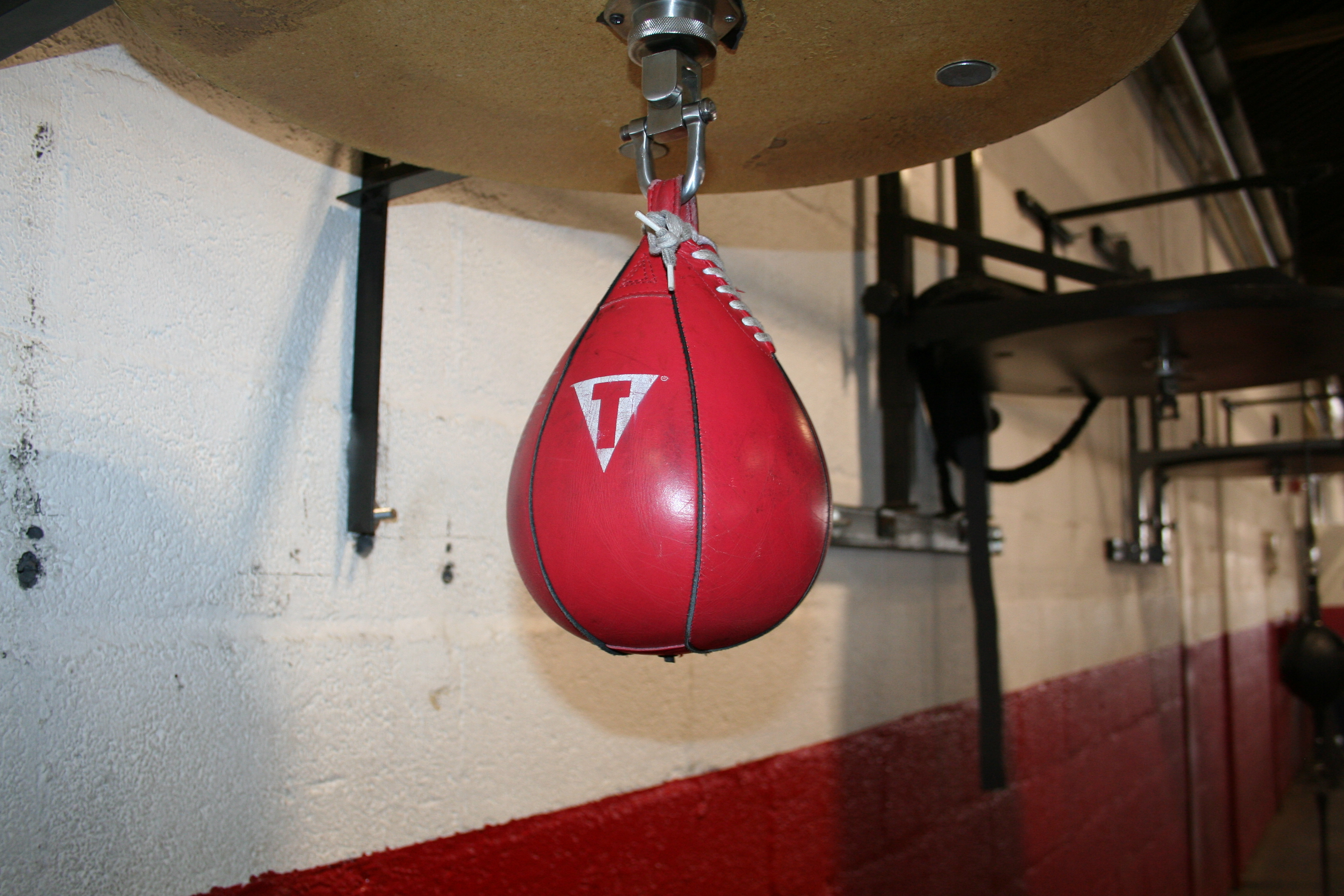 Photo of a speed bag at Downtown Boxing Gym
