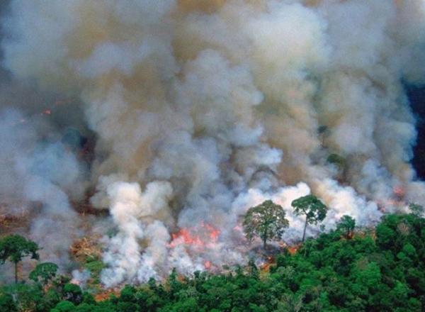 Image shows the Amazon rainforest burning