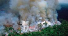 Image shows the Amazon rainforest burning