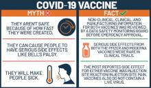 Infographic showing facts versus myths about the COVID-19 vaccine