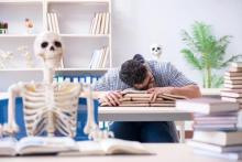 Photo of two skeletons and a student