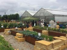 An urban garden is filled with several types of greenery and has two greenhouses in the middle. People stand outside.