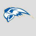 Henry Ford College Hawks Athletics logo