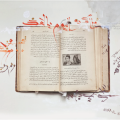 "Anthropology book carried by Haifa Al-Habeeb, photographed by Jim Lommasson. Al-Habeeb's Arabic calligraphy over the photo reads: ""Alas is today similar to yesterday? Despair, sickness, and foreignness, will my tomorrow be like my yesterday?"""